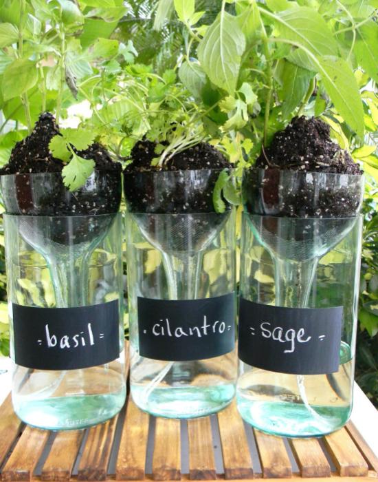 Идеи превращения винных бутылок в стильные и функциональные: Горшок для цветов. Горшочки для цветов из винных бутылок с источниками постоянной влаги.