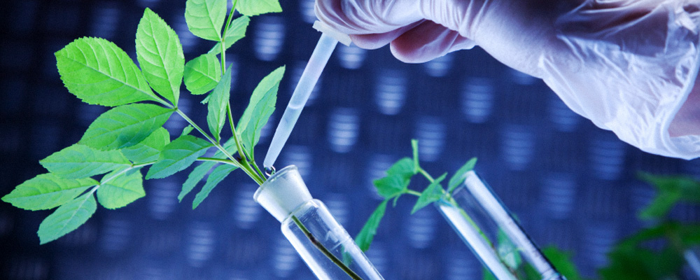 future of biotechnology Biotechnology has application in four major industrial areas, including health care (medical), crop production and agriculture, non food (industrial) uses of crops and other products.