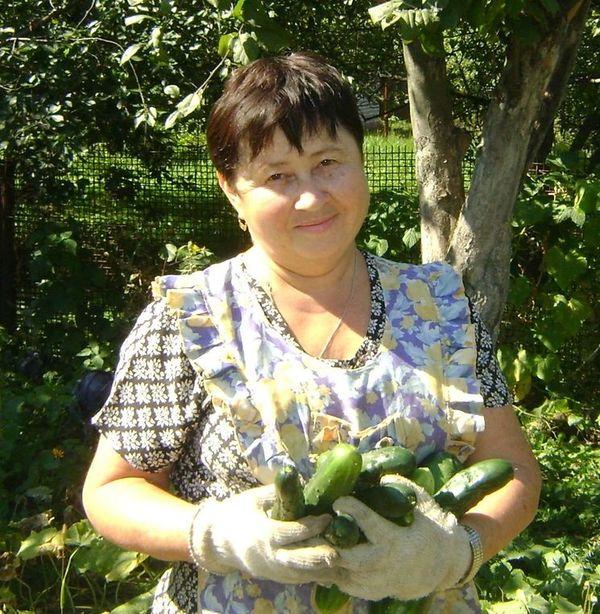 Опыт огородников. Подкормка растений дрожжами.
