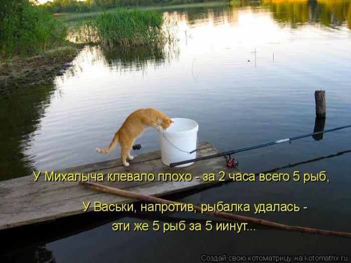 куда поехать на рыбалку новичкам