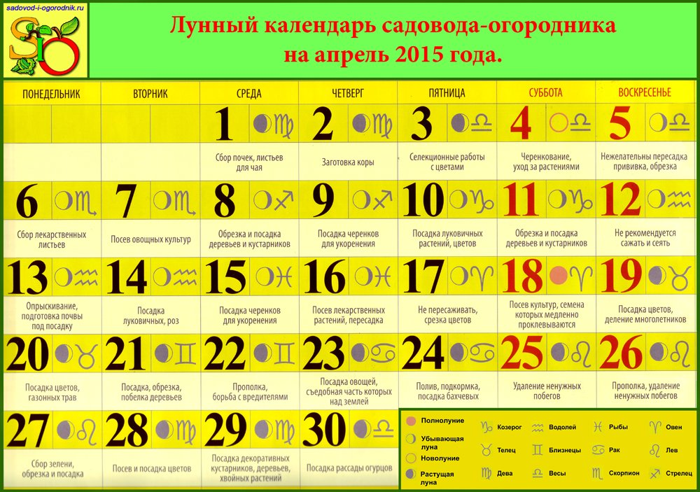 ЛУННЫЙ КАЛЕНДАРЬ САДОВОДА-ОГОРОДНИКА НА АПРЕЛЬ 2015 ГОДА