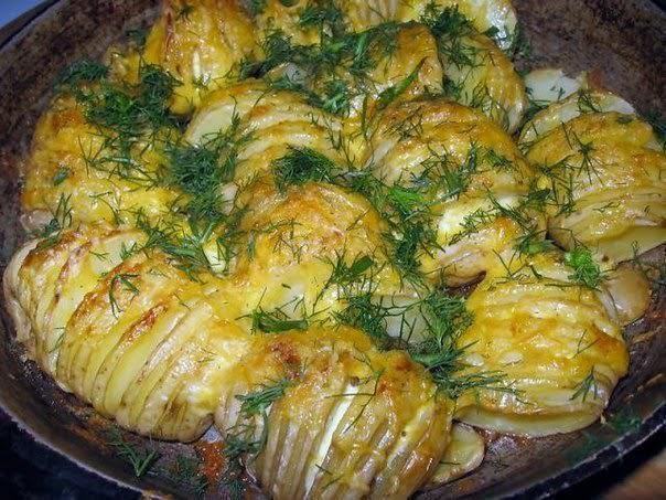 Картофель с сыром — прекрасный ужин для всей семьи