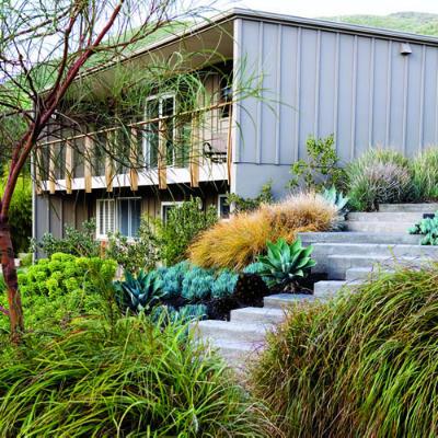Оформление газонов в саду