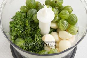 Укроп промыть, встряхнуть, срезать стебли. Зелень измельчить и поместить в чашу блендера, добавить очищенный чеснок и 1/3 ягод крыжовника.