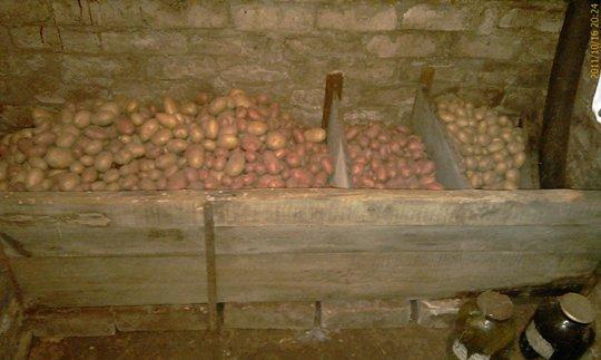 Ящик для картошки своими руками в гараже