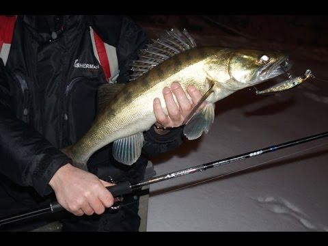 ловля рыбы спиннингом ночью