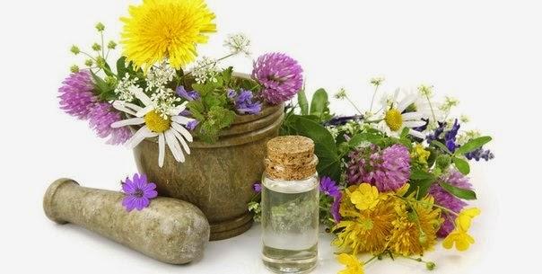 Альтернатитва химии: натуральная косметика