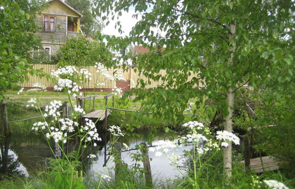Почем в России домики в деревне?