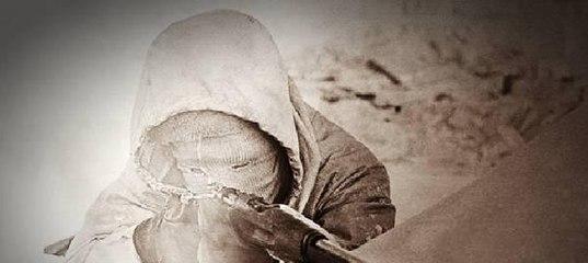 Самый результативный снайпер XX века