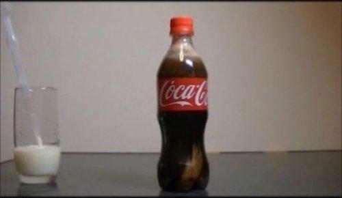 Экспериментальный уголок: в Кока-Колу добавляем молоко (13 фото)