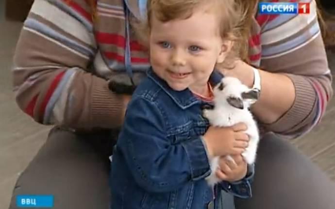 В Москве открылся контактный зоопарк