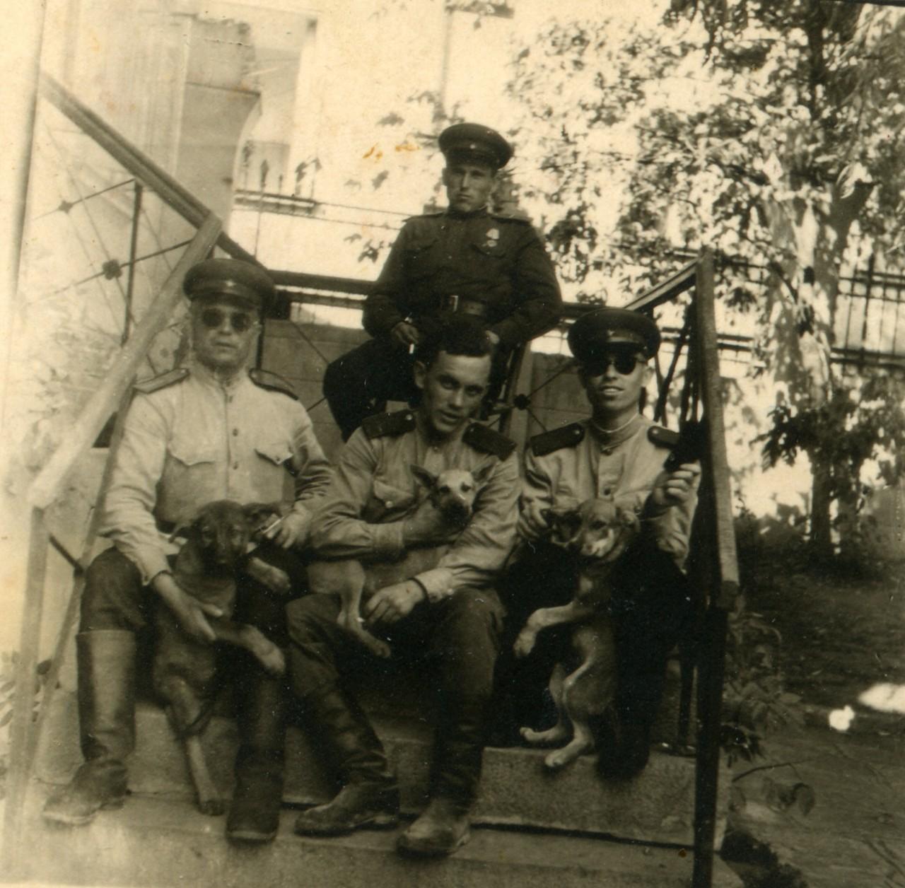 Группа из КРО СМЕРШ 37-й армии. Смерш, война, жизнь