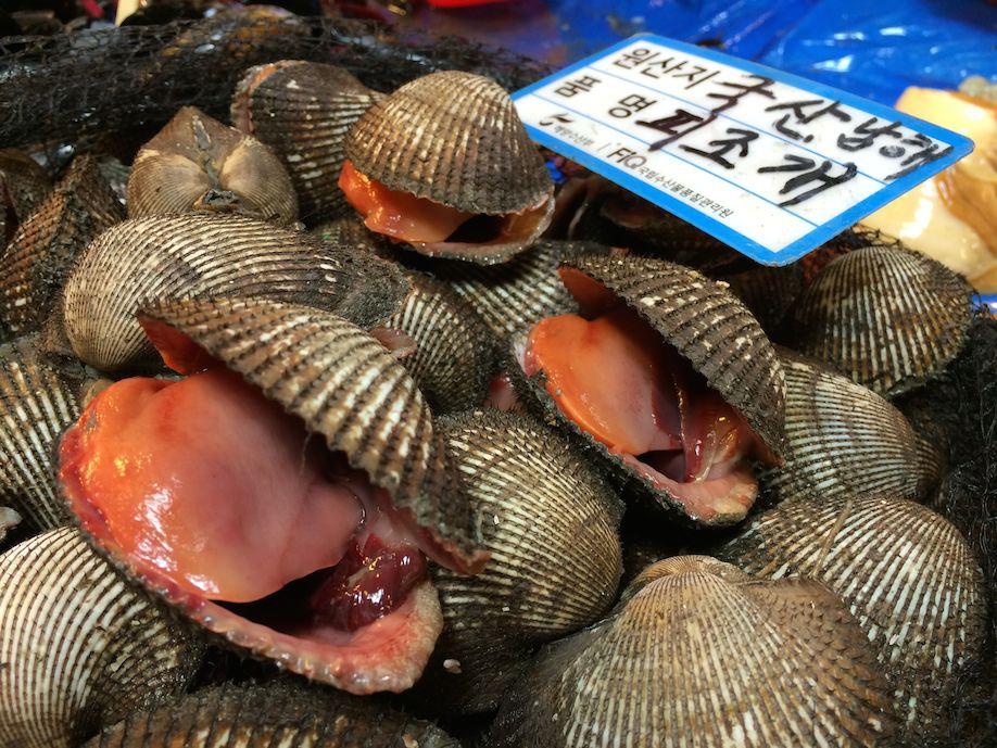 Норянджин: рыбный рынок Сеула с мировой известностью корея, рыба, сеул, фоторепортаж