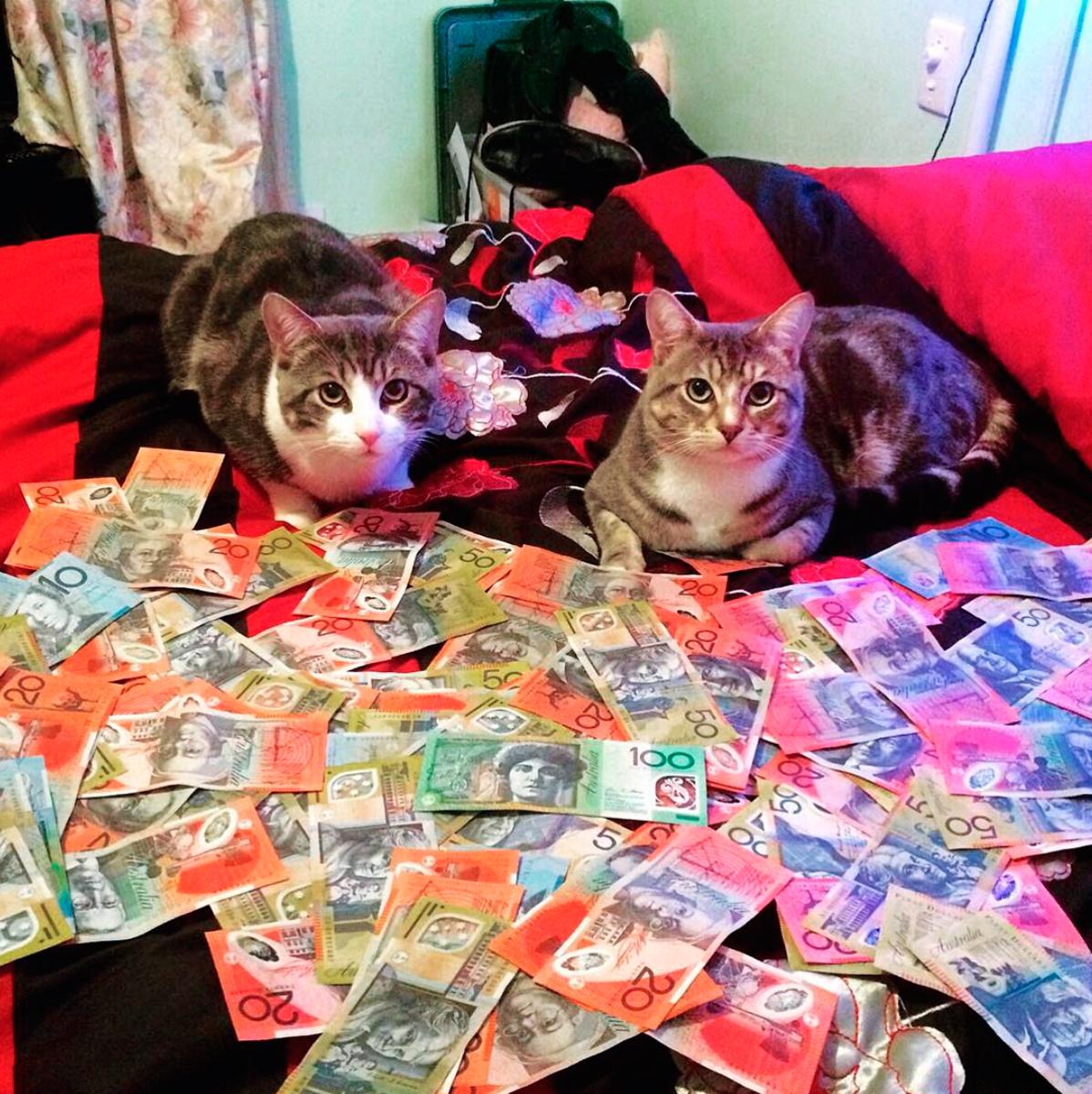 cash-4