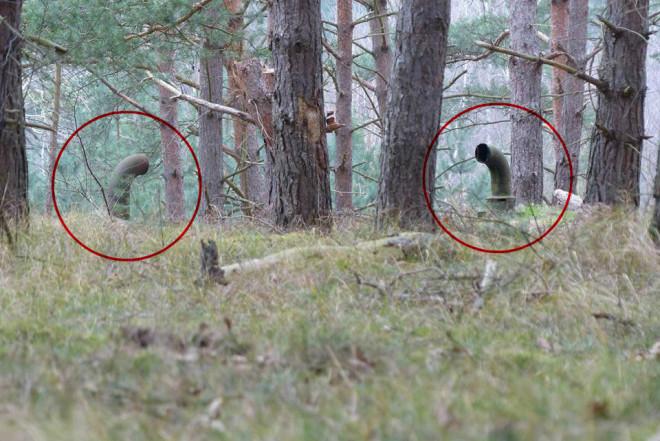 Загадочные трубы в лесу привели туристов в подземный бункер
