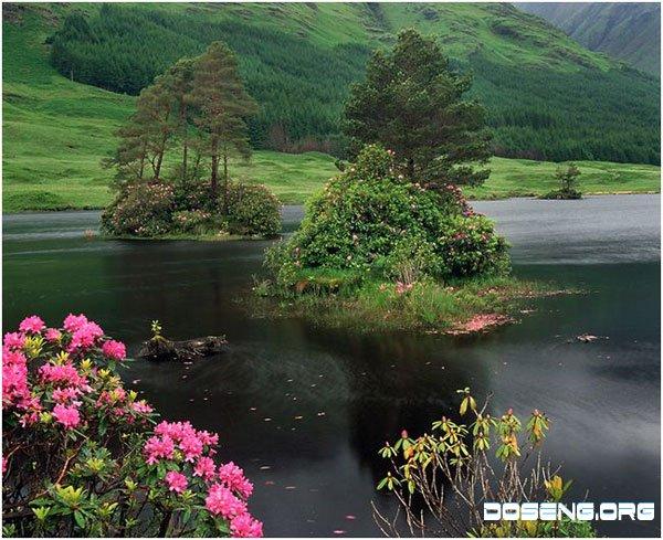 Природа Шотландии (10 фото)