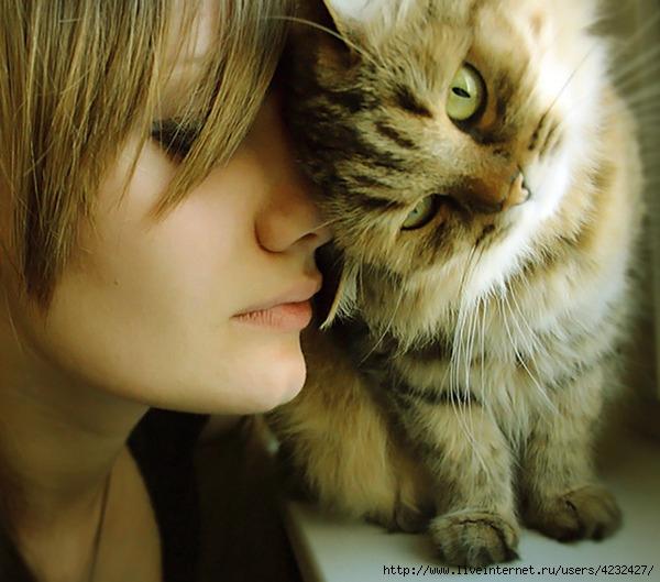 RM - Social Network - Кошки и люди
