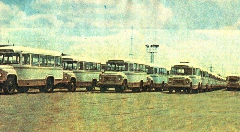 Площадка готовой продукции Курганского автобусного завода. Тираж выпускаемых этим заводом автобусов в советские годы был одним из самых больших в мире. ЛАЗ, СССР, авто, автобус, автомобили, зил, лиаз, советский автопром