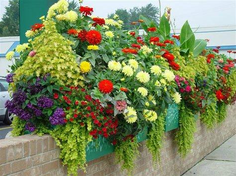 Садовый дизайн-контейнерное цветоводство