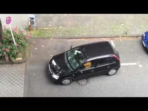 Искусство вождения этой женщины впечатляет! Парковаться 6 минут не каждый сможет!