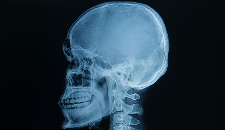 20+ изображений об анатомии человека, которые вас удивят