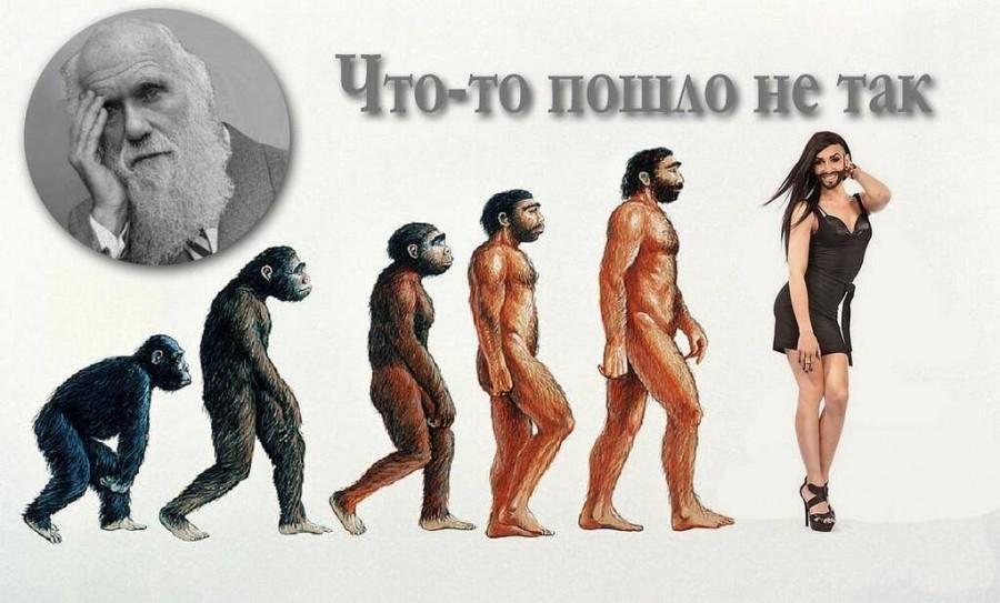 МАЛЕНЬКАЯ ЕВРОПА — КРЫСЯТНИК фото