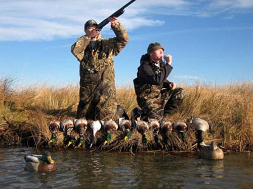 10 секретов успешной охоты на уток