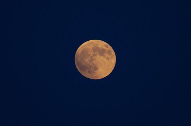 Лунный календарь садовода и огородника с 21 августа по 8 сентября