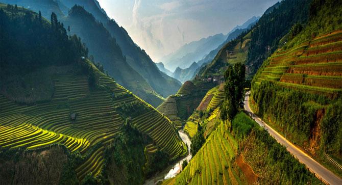 Рисовые поля во Вьетнаме: изумрудная красота террас