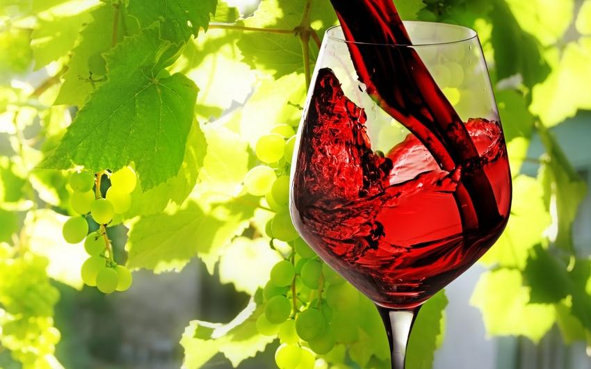 Чем полезно вино. Как пить его так, чтобы поправить здоровье