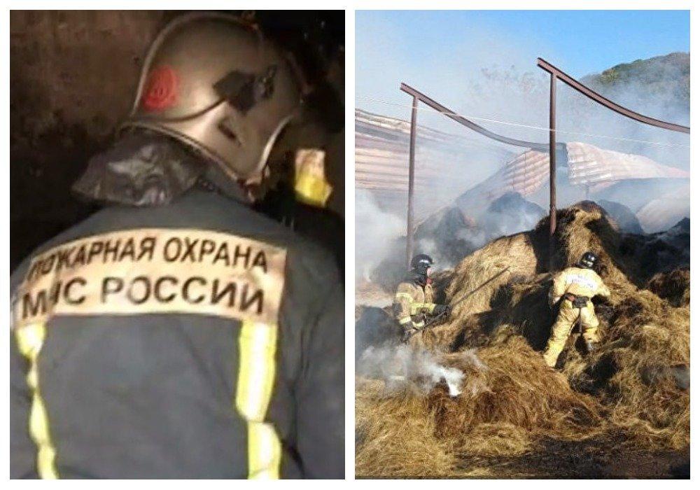 Во Владивостоке четыре женщины пострадали на пожаре в конном клубе