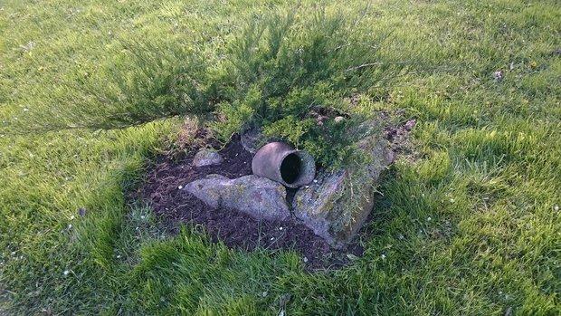 Родовое гнездо вне формата