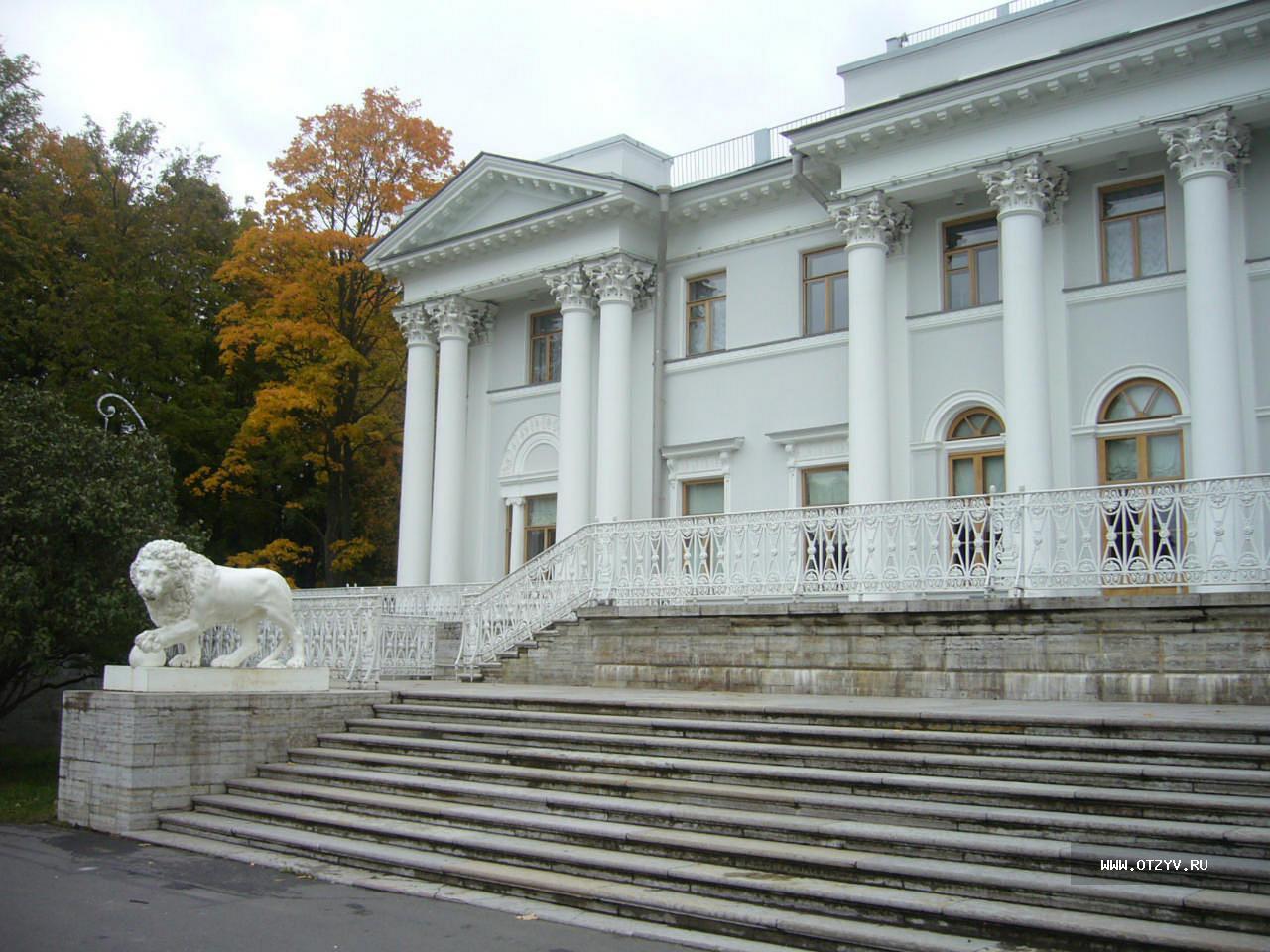 Львы Санкт-Петербурга