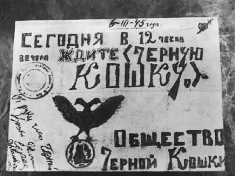 История банды «Черная кошка» в войне с московским уголовным розыском