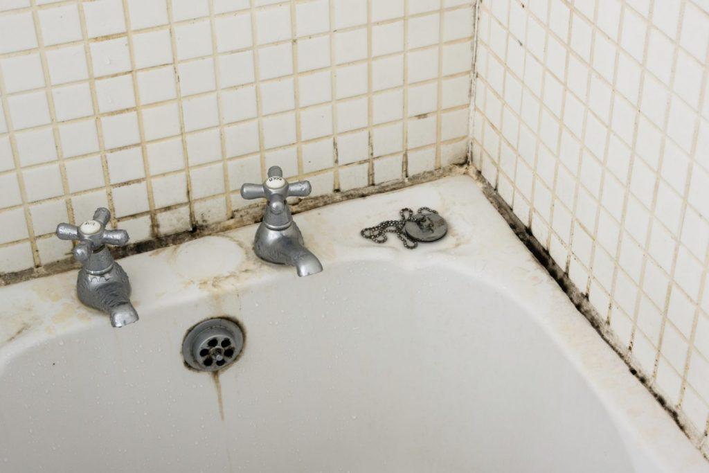 Как удалить черную плесень в ванной