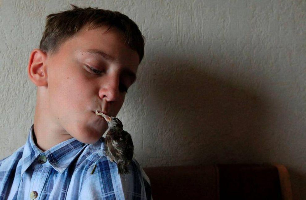 Трепетная дружба мальчика и воробья