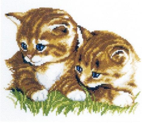 """Два котенка"""