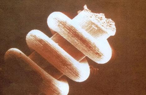 Увеличенное изображение одного из нано-объектов, найденных в Уральских горах артефакт, интересно, история, познавательно, факты