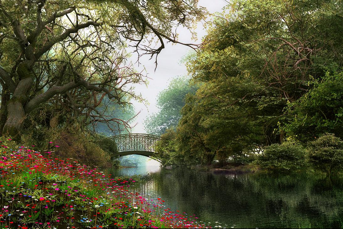 Woodland Waterway