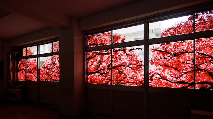 На первый взгляд кажется, что за окном зацвела сакура. Но ты удивишься, когда узнаешь, что это.