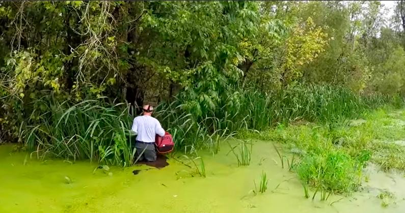 Он услышал плач на болоте и прыгнул прямо в воду, где притаились аллигаторы!