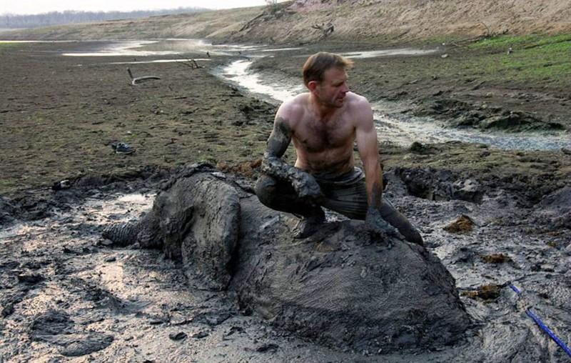 Трудная эта работа — вытащить слона из болота