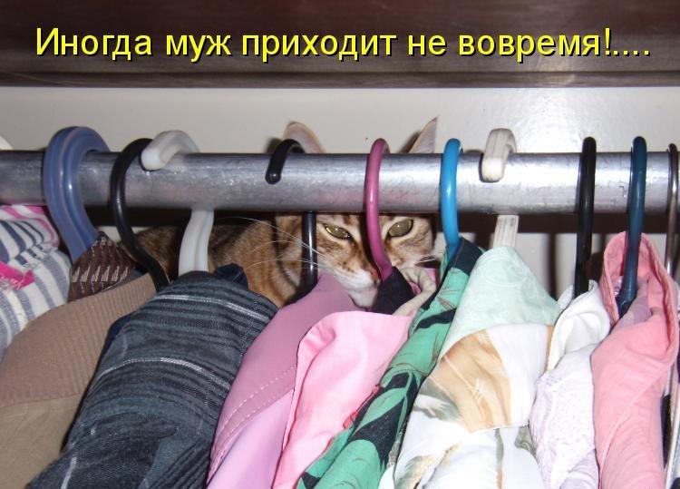 Смешные фото для настроения