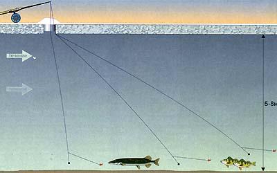 рыбалка летом на покаток