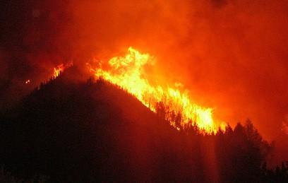 Спасатели не могут справиться с лесными пожарами в Калифорнии