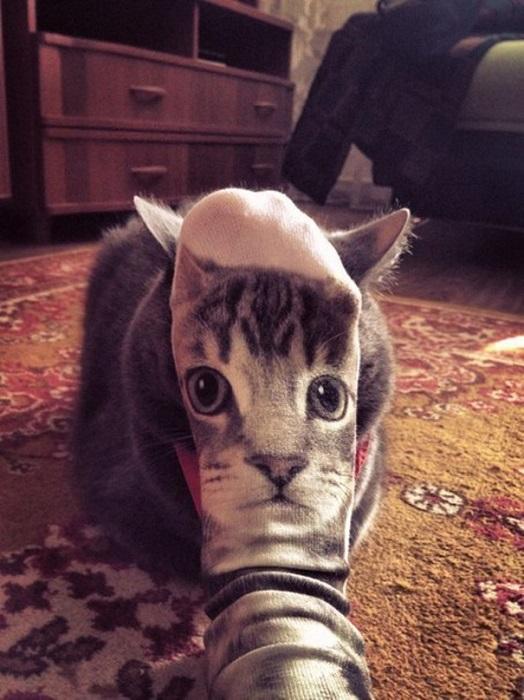 Носки, просто носки.
