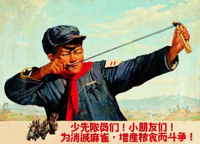 Истребление воробьев в Китае привело к масштабной катастрофе