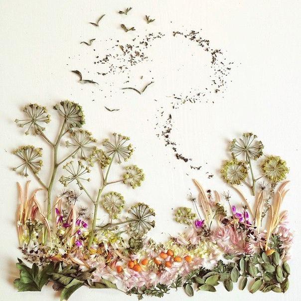 Композиции от Bridget Collins