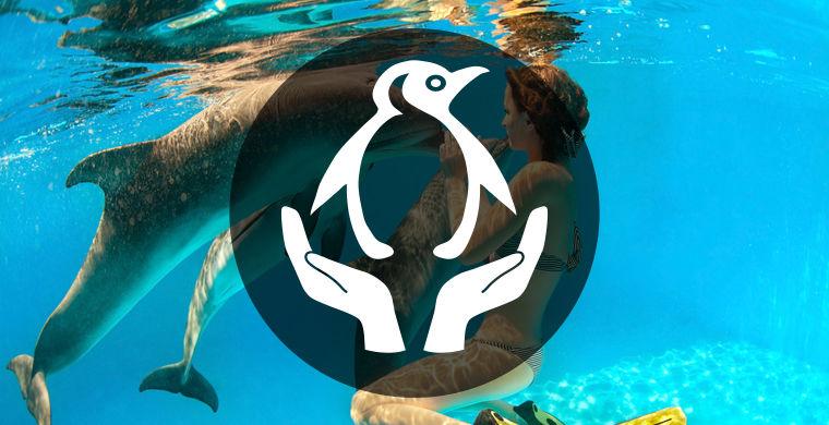 вакансии тренера дельфинарий крым бобра Санкт-Петербурге