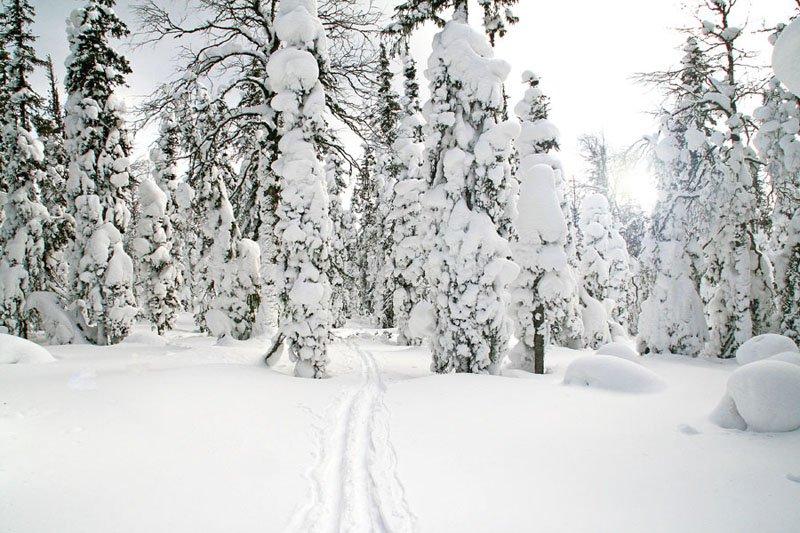 Путешествуйте зимой по Северному Уралу!